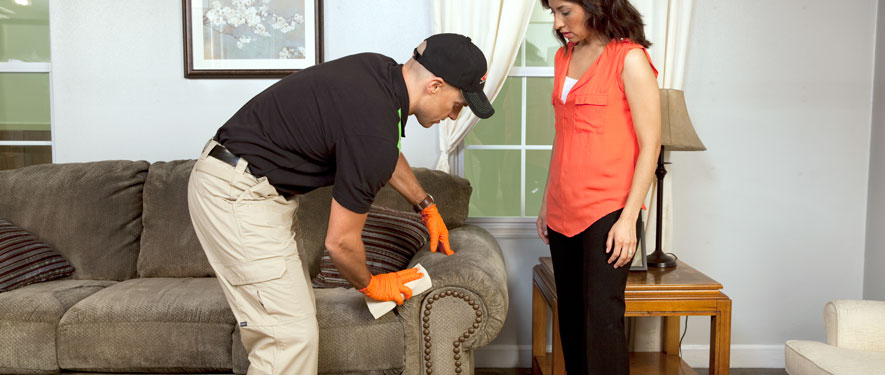 Wooster, OH carpet upholstery cleaning